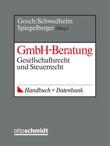 GmbH-Beratung (Grundwerk mit Fortsetzungsbezug für mindestens 2 Jahre)